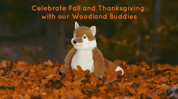 Celebrate Fall and Thanksgiving with our Woodland Buddies