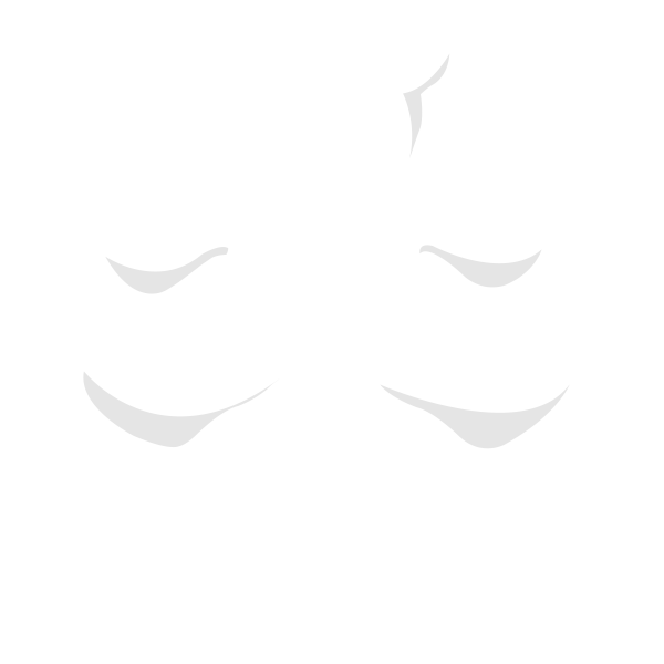 Embroider Buddy®