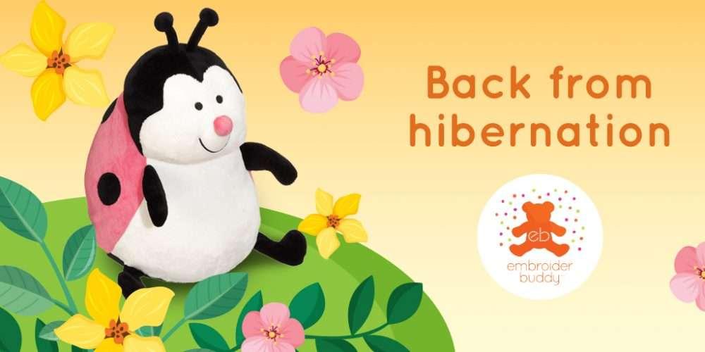 EB-blog-Hibernation