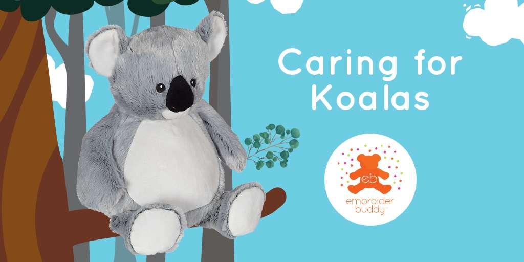 Caring for Koalas