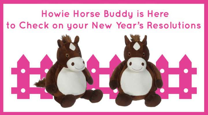 Howie Horse Buddy is Here