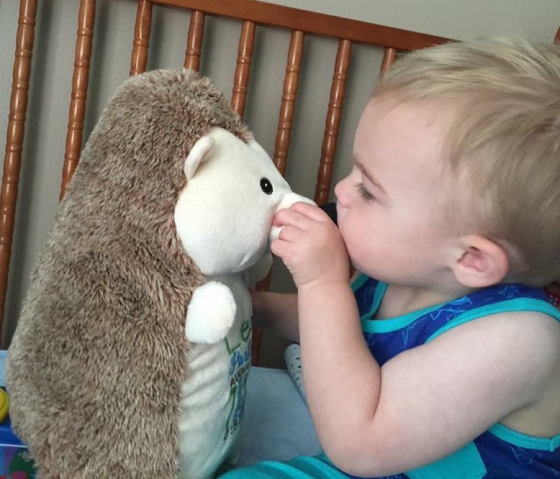 Baby and Hedgehog
