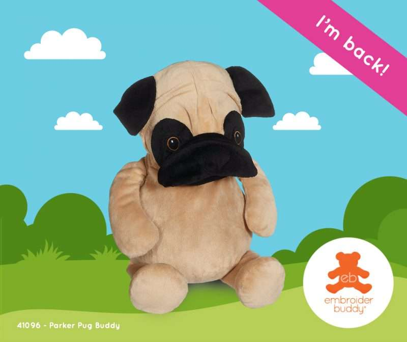 Parker Pug Buddy